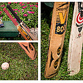 Cricket Series by Tom Gari Gallery-Three-Photography