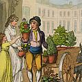 Cries Of London The Garden Pot Seller by Thomas Rowlandson