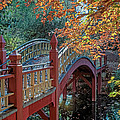 Crim Dell Bridge At William And Mary by Jerry Gammon