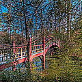 Crim Dell Bridge Spring by Jerry Gammon