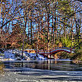 Crim Dell In Winter William And Mary by Jerry Gammon