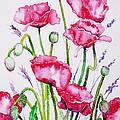 Crimson Poppies by Zaira Dzhaubaeva