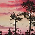 Crimson Sunset Splendor by James Williamson