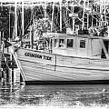 Crimson Tide Grungy by Michael Thomas