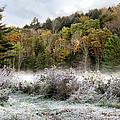 Crisp Morning Frost Hillside Landscape by Christina Rollo