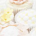 Criss-cross Cupcake by Anne Gilbert