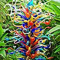 Cristal Garden by Manuel Lopez