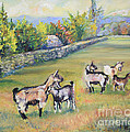 Croatian Goats by Raija Merila