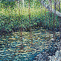 Crocodile Creek by Danielle  Perry