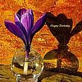 Crocus Floral Birthday Card by Chris Berry
