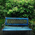 Crooked Little Bench by Patricia Strand