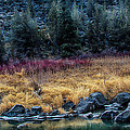 Crooked River At Smith Rock by Robert Woodward