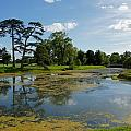 Croome Park 82 by Ron Harpham