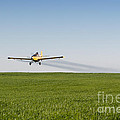 Crop Duster Airplane Flying Over Farmland by Cindy Singleton