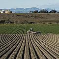 Crops In San Luis Obispo County by Carol M Highsmith
