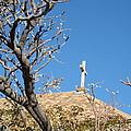 Cross by David S Reynolds
