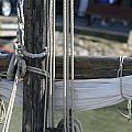 Cross White Sail  by Phoenix De Vries