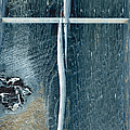 Cross2bear by Tom Druin