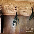 Crossbeam With Herbs Drying by RC DeWinter
