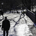 Crossing Over - Central Park - Nyc by Madeline Ellis