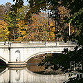 Crossing Over Into Autumn by Living Color Photography Lorraine Lynch