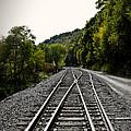 Crossing Tracks by Tom Gari Gallery-Three-Photography