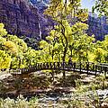 Crossover The Bridge - Zion by Jon Berghoff