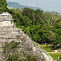 Crowd At Palenque by Jess Kraft