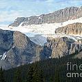 Crowfoot Glacier by Deanna Cagle