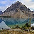 Crowfoot Mountain Banff Np by Teresa Zieba