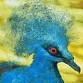 Crowned Pigeon by George Rossidis