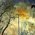 Crows Colors by Gothicrow Images