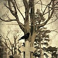 Crow's Cross by Gothicrow Images
