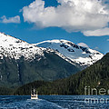 Cruising Alaska by Robert Bales