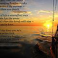 Cruising Poem by Anne Mott