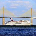Cruising Tampa Bay by David Lee Thompson