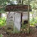 Crumbling Old Outhouse by Susan Wyman