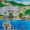 Cruz Bay St. Johns Virgin Islands by Frank Hunter
