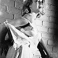 Cry Terror, Inger Stevens, 1958 by Everett