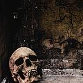 Crypt by Margie Hurwich