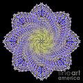 Crystal Blue Salvia by Karen Jordan Allen
