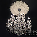 Crystal Chandelier - Paris Black And White Chandelier - Sparkling Elegant Chandelier Opulence by Kathy Fornal