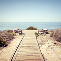 Crystal Cove Overlook Retro Picture by Paul Velgos