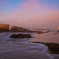 Crystal Cove State Park by Ronda Kimbrow