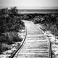Crystal Cove Wooden Walkway In Black And White by Paul Velgos