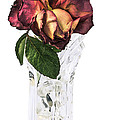 Crystal Rose by Nancy Strahinic