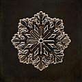 Crystal Snowflake by Terry Fleckney