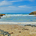Crystal Waters - Port Macquarie Beach by Kaye Menner