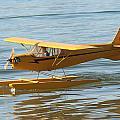 Cub On Floats by David S Reynolds
