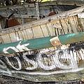 Cuban Refugees Boat 2 by Bob Slitzan